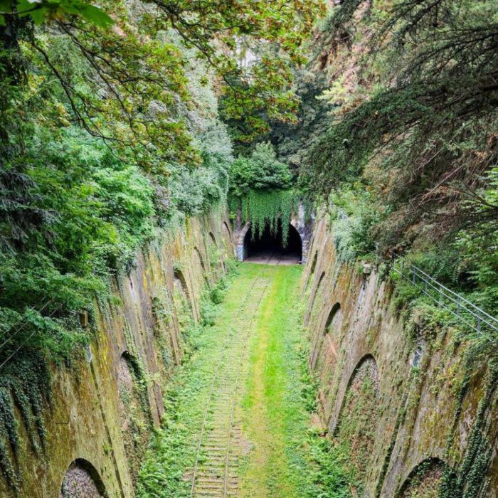 tunel por donde pasaba el tren abandonado