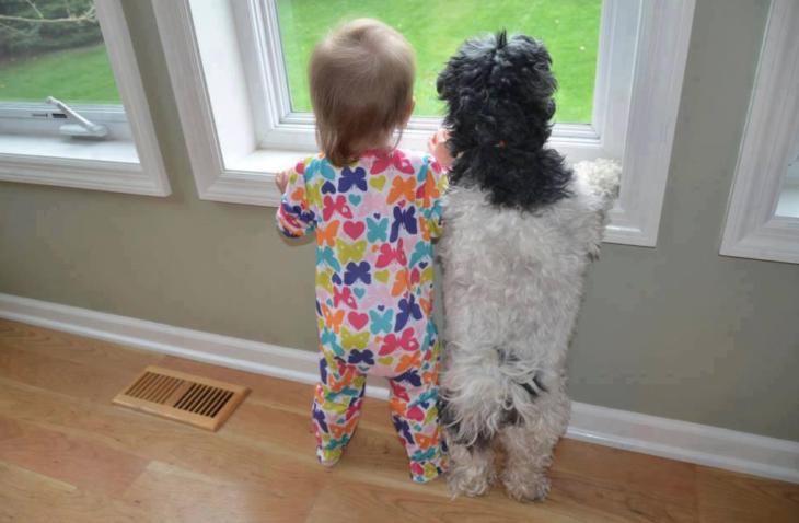 pijama ventana perrito niña