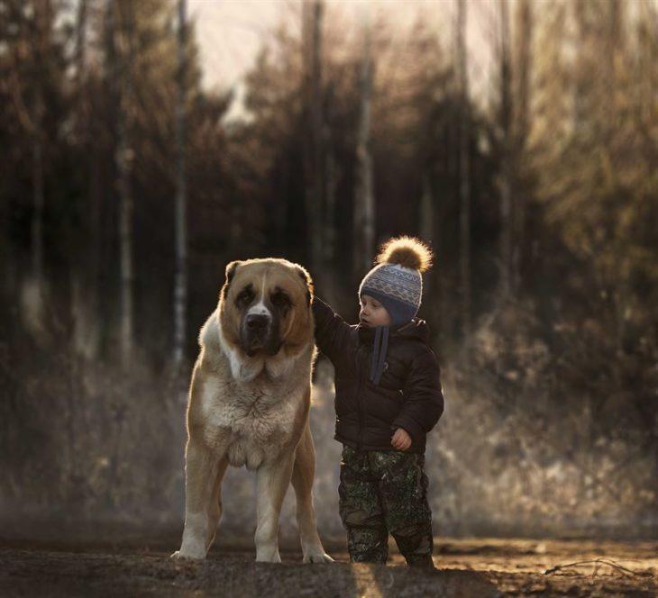 guardián perro grande