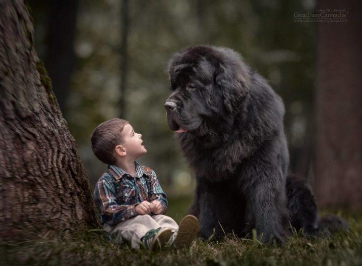 niño y perrito platicando