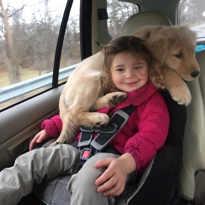perro acostado sobre niña