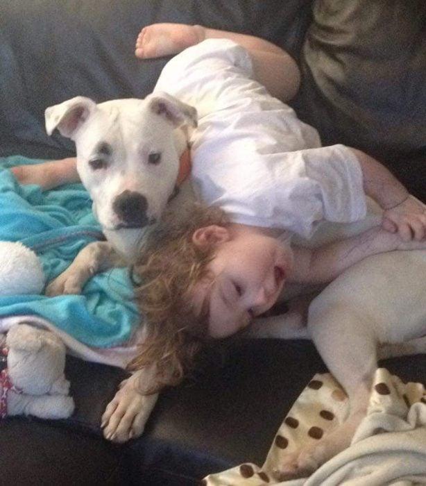niña sobre perro