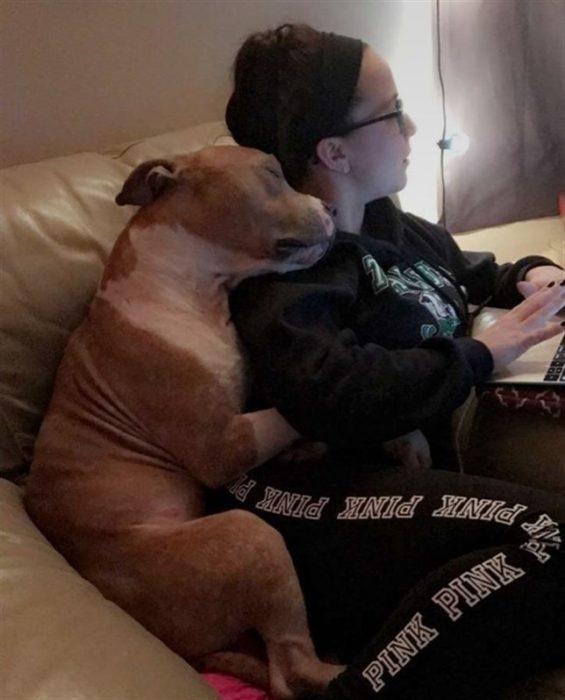 Perro abraza a su dueña y se duerme en su hombro