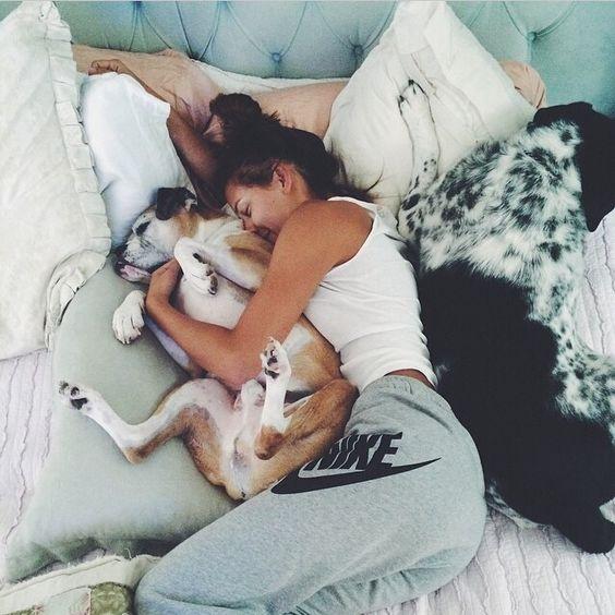abrazo cama perros