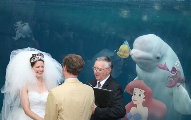 sirenita y beluga boda