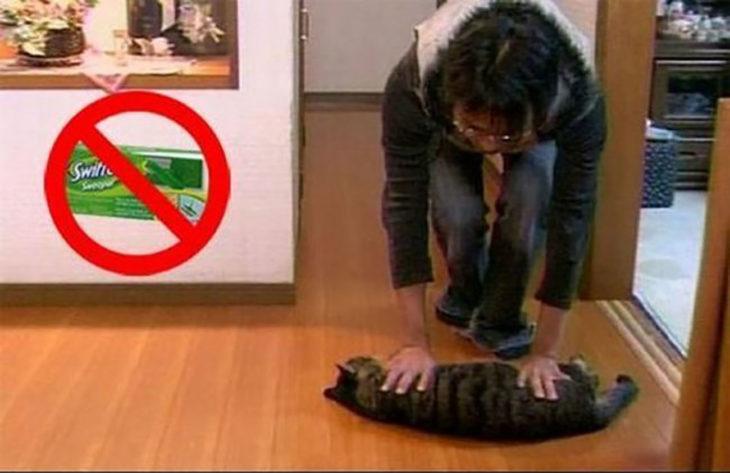 mujer arrastrando a su gato