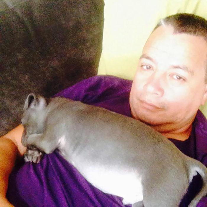 hombre con un cachorro gordito en el pecho