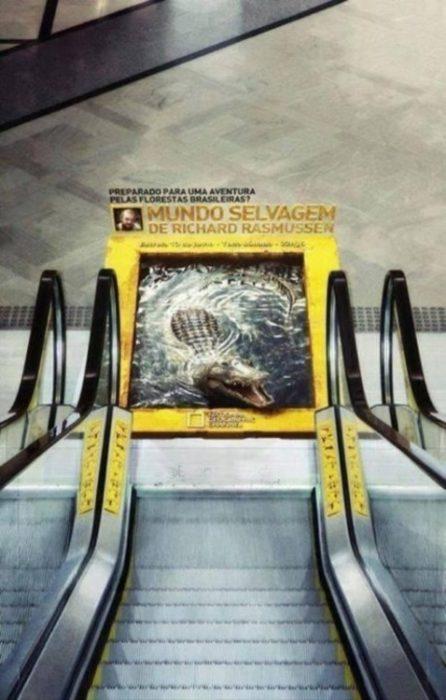 escaleras eléctricas con publicidad de natgeo