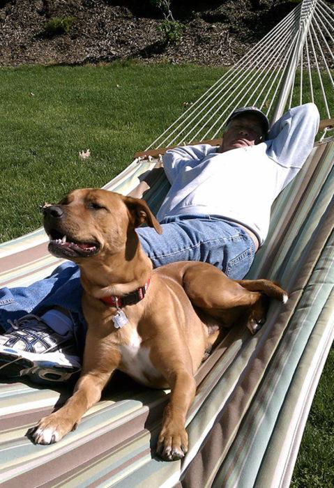 hombre en una hamaca con un perro