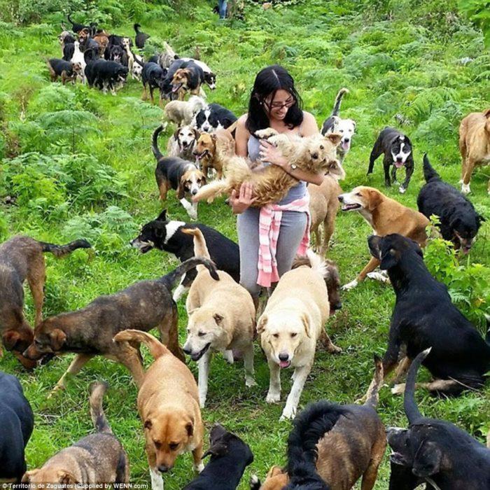 mujer con muchos perros