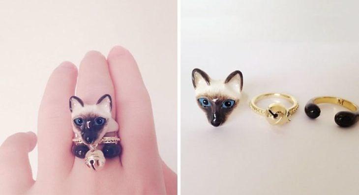 gato siames anillo