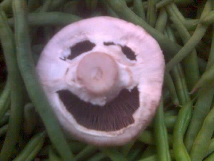 champiñon con cara de cerdo feliz