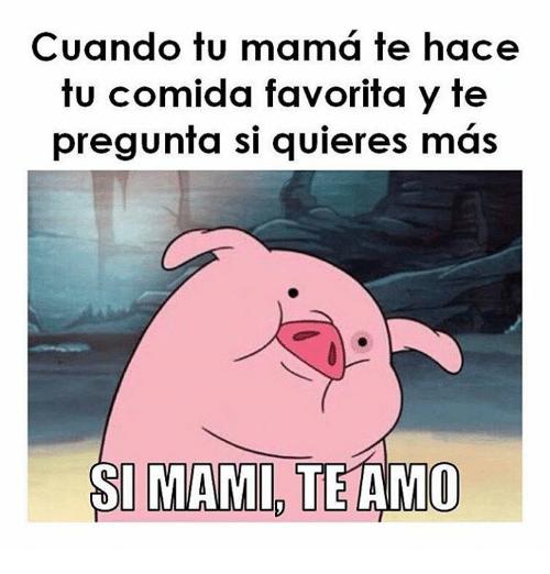mami te amo puerquito