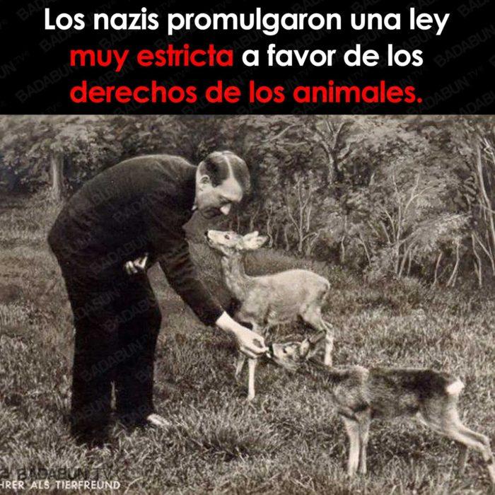 derechos animales hitler nazis