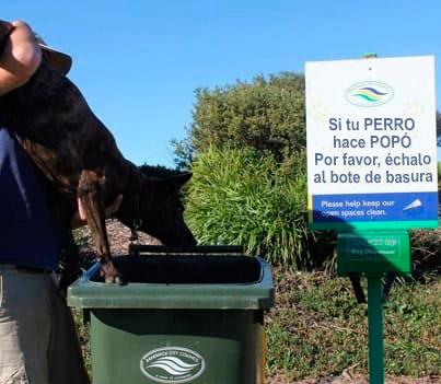 Memes perros - tiralo a la basura