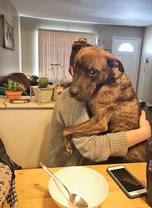 perro sobre su dueña viendo a la cámara