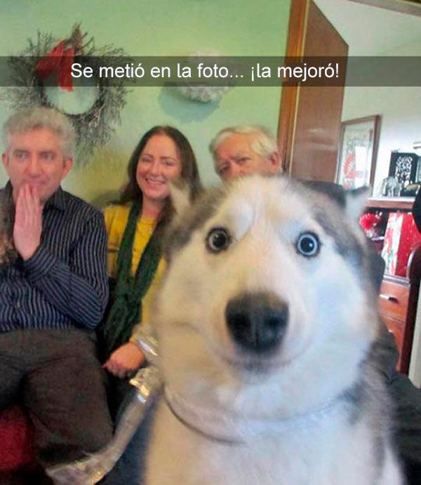 Snapchats divertidos - se metió