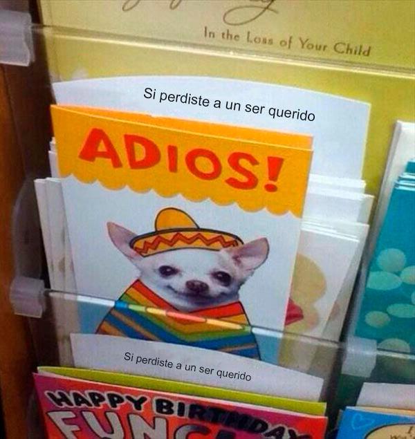 tarjeta de un chihuahua con sombrero que dice adiós