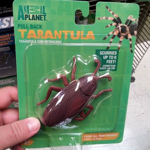 tarantula de juguete y es una cucaracha