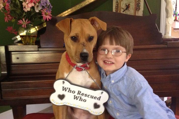 perrito y niño quién rescató a quién