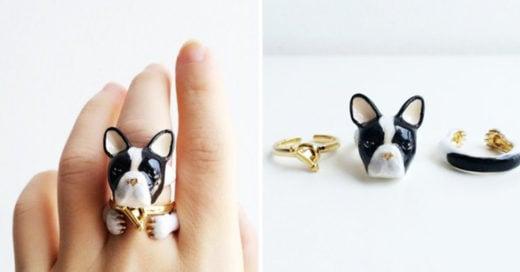 Cover Estos anillos de animales en 3 piezas
