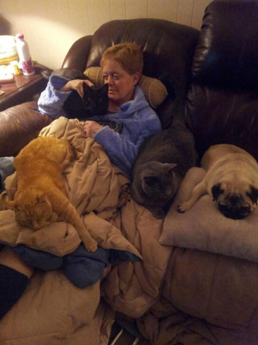 mujer operada de las rodillas con animales cuidándola