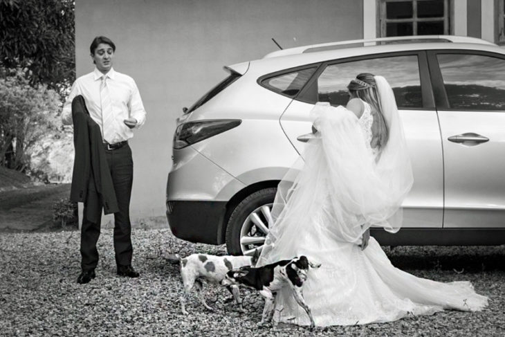 perro orinando vestido de novia