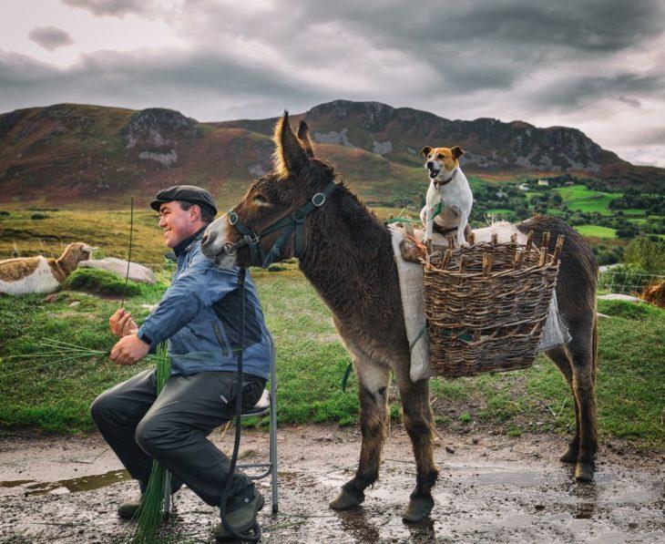 hombre con burro y perro