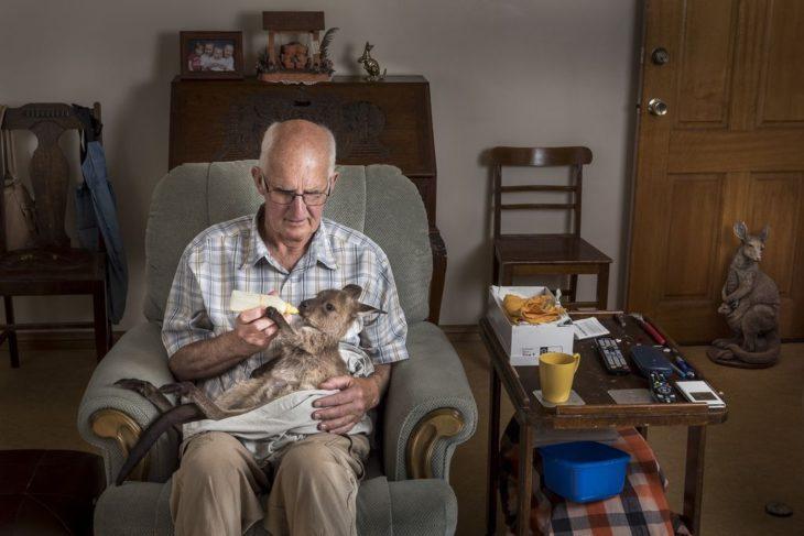 hombre dándole biberón a un canguro