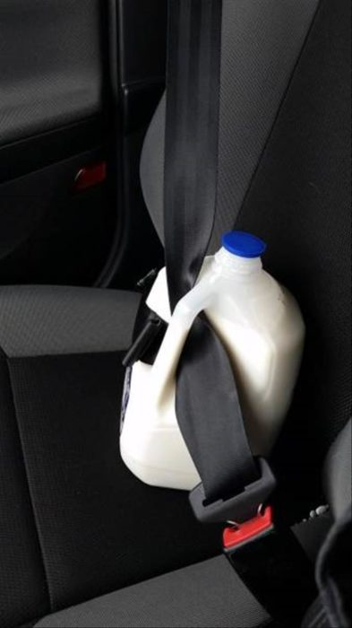 leche cinturón seguridad