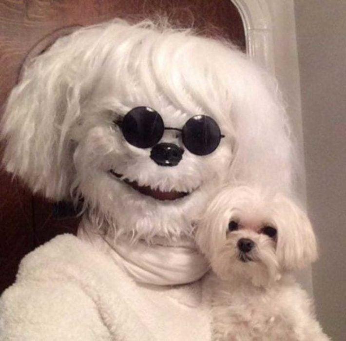 persona disfrazada de perro cargando un perro
