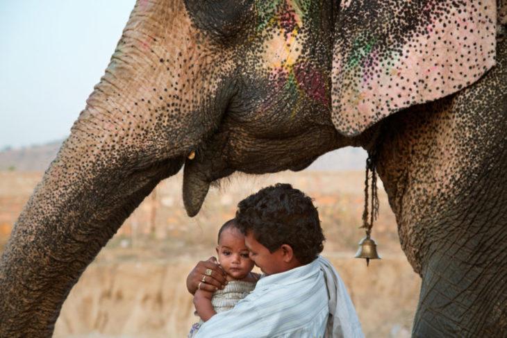 hombre, bebé y elefante