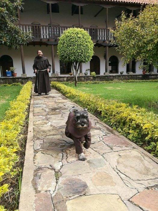 perrito corriendo en un convento