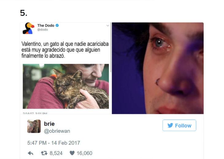 foto de una persona abrazando a un gato mientras otra llora