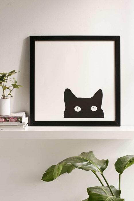 gatos negros 1