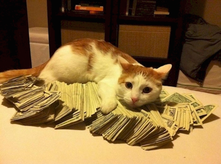 comoda cama de dinero