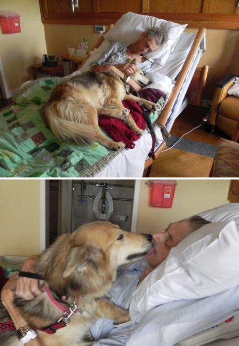 hombre abrazando a perro en una camilla de hospital