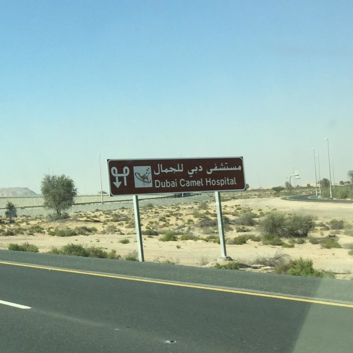 cartel en medio del desierto