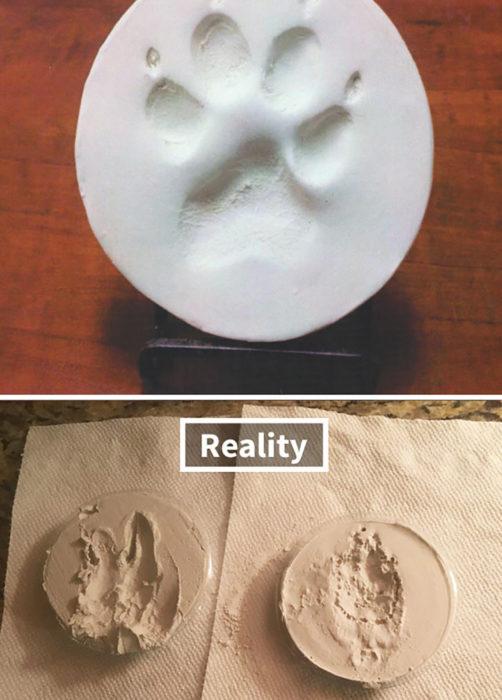 huellita de perro expectativa vs realidad