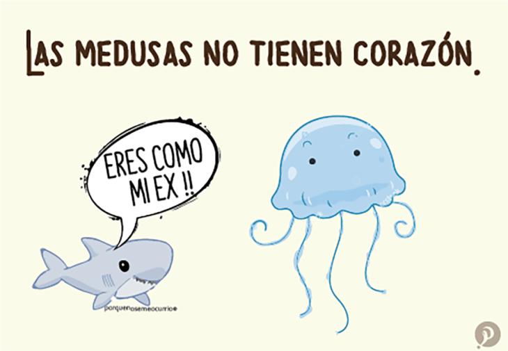 ilustración de una medusa y un tiburón