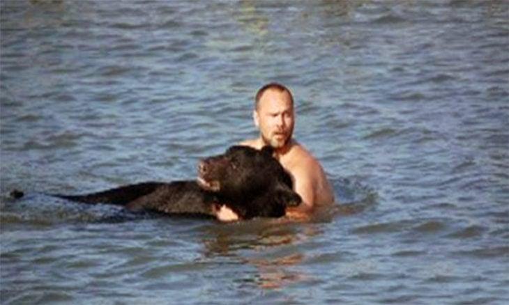 rescate oso agua