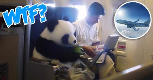 Cover 16 Situaciones extrañas que ocurren durante un vuelo