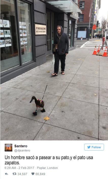 hombre camina por la calle con un pato que usa zapatos