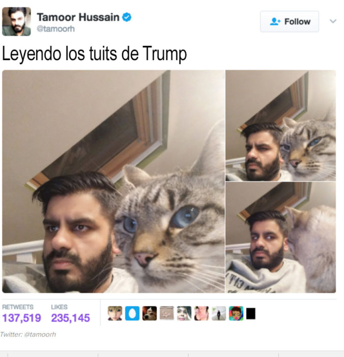 hombre al lado de gato que hace caras raras