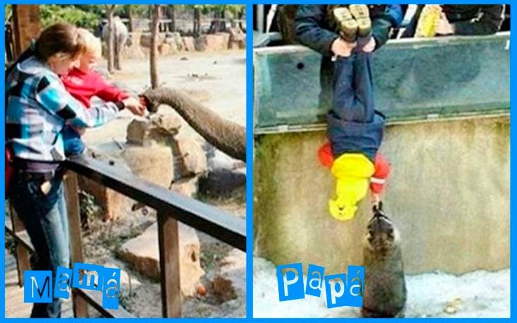ir al zoológico papá vs mamá