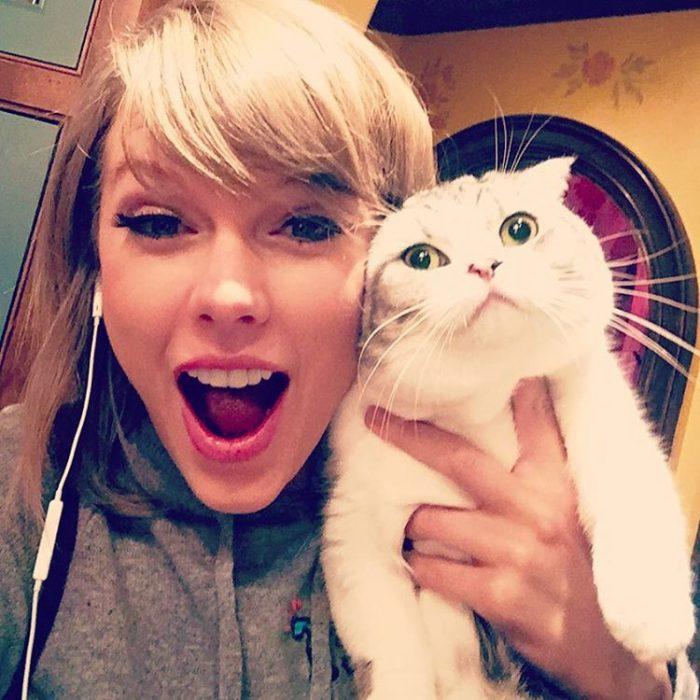 taylor swift y un gato