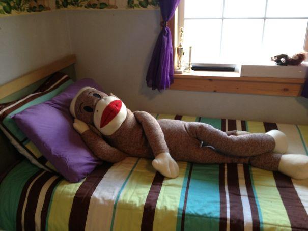 mono cama peluche