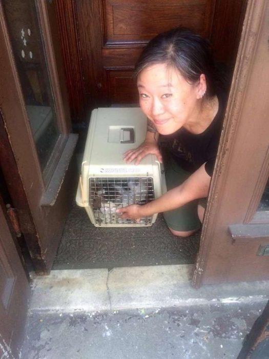 mujer foto gato