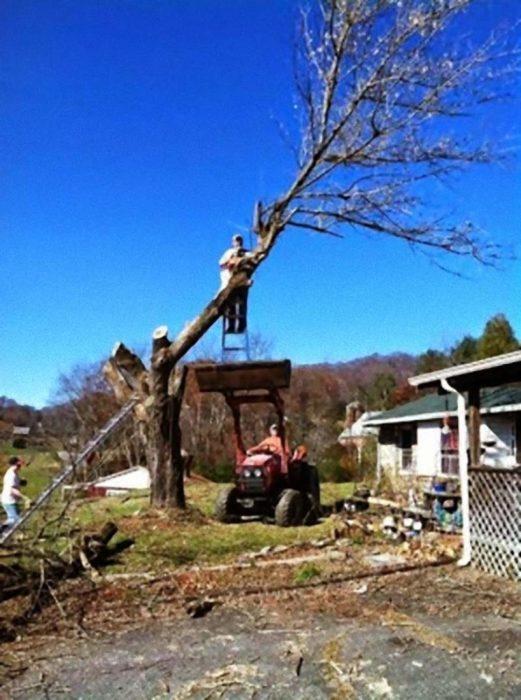 hombre podando árbol subido en escalera sobre máquina