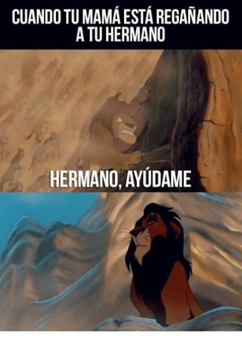 Memes de hermanos - rey león